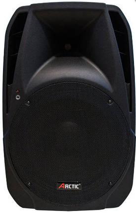 2-полосная пассивная акустическая  ARCTIC S1515R, фото 2