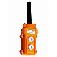 Пульт кнопочный ПКТ 2 кнопки IP54 Electro