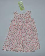 Платье для девочки,ПЛ 111,с красными розамибелый Бэмби Украина 80(р)