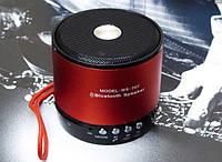 Портативная FM MP3 колонка WS-767, фото 1