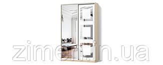 Шкаф-купе Классик двухдверный Зеркало/Зеркало с рисунком пескоструй
