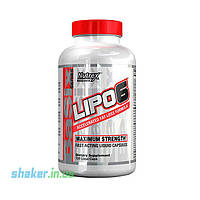 Жиросжигатель Nutrex Lipo 6 Maximum Strength (120 капс) нутрекс липо 6 блэк блек