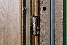 Наружные  входные двери Редфорт Арка винорит на улицу, фото 3