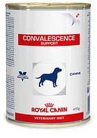 Консерва Royal Canin (Роял Канин) CONVALESCENCE SUPPORT для кошек в период выздоровления