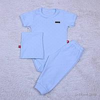 Летний комплект для новорожденных Нежность (голубой), фото 1