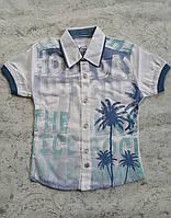 Летняя рубашка для мальчиков 80,92,98,104 роста Лен, фото 1