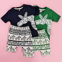 Набор одежды футболка и шорты для мальчика Зебра размер 74,86 см