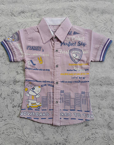 Рубашка для мальчиков короткий рукав 80,92,98,104 роста, фото 2