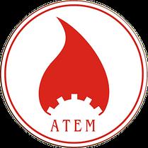 Газовые котлы отопления Атем-Житомир - 3 КС-Г -020СН Дым, одноконтурный, Атем, фото 3