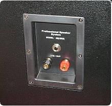 """Пассивная двухполосная акустическая система с 12"""" динамиком SOUNDKING SKFQ012A, фото 3"""