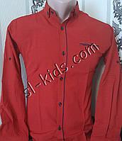 Стильная рубашка для мальчика 11-15 лет(опт) (1805) (пр. Турция)
