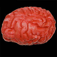 Мозги кровавые, декор на хэллоуин