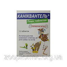 Средство от глистов для собак и кошек  Каниквантель Плюс 12 таблеток (1 таблетка на 10 кг)