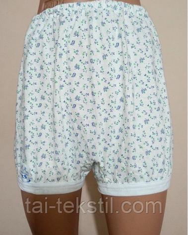 Панталоны женские короткие  EZGI Турция №6 (48-50р), фото 2