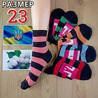 Носки женские демисезонные Житомир Украина хлопок 100% 23р  NJD-02930, фото 1
