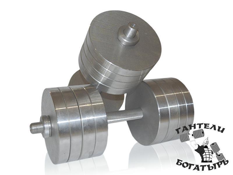 Металлические наборные гантели Богатырь 2 штуки по 38 кг