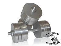 Металлические наборные гантели Богатырь 2 штуки по 38 кг, фото 1