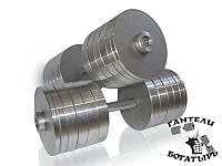 Разборные металлические гантели Богатырь 2 штуки по 46 кг