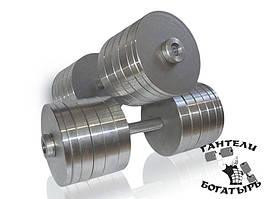 Розбірні металеві гантелі Богатир 2 штуки по 46 кг