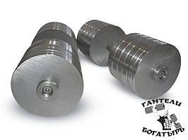 Розбірні металеві гантелі Богатир 2 штуки по 48 кг