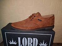 Кожаные стильные мужские туфли Lord ,перфорация