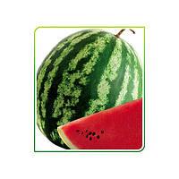 Семена арбуза Маниса F1 1000 сем. компании Yuksel Seed