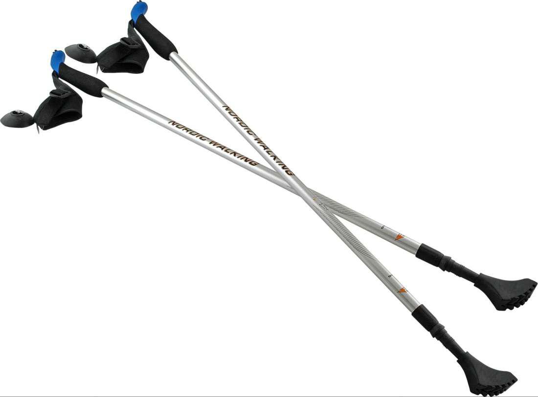 Палки для скандинавської ходьби NILS Extreme NW 602