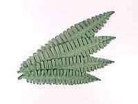 Лист папоротника неокрашенный. Цвет темно-зеленый.