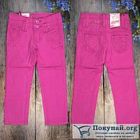 Цветные брюки для девочек Размеры: от 3 до 6лет (6327)