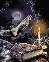 Картина по номерам Гарри Поттер (AS0151) 40 х 50 см ArtStory