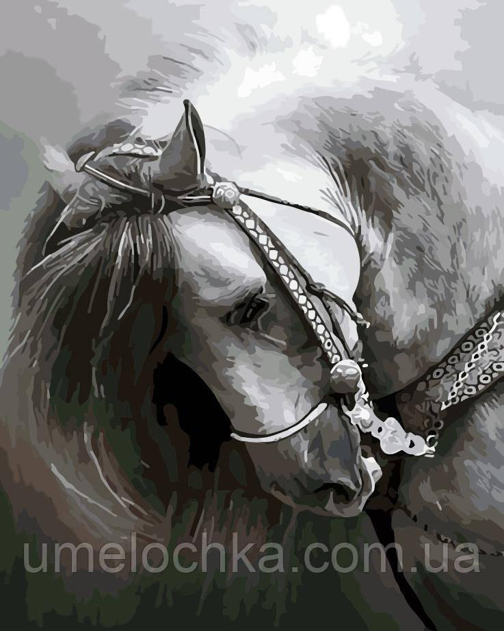 Картина по номерам Грация (AS0175) 40 х 50 см ArtStory