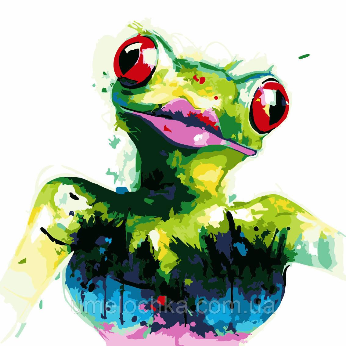 Картина раскраска Лягушка (AS0234) 40 х 40 см ArtStory [Без коробки]