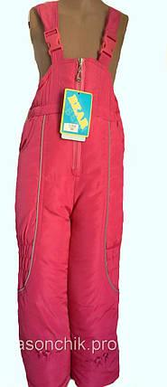 Штаны теплые с вышивкой, фото 2