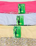 Трусики женские 3563  бамбук однотонные леопард TMN , фото 2
