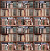 Фотообои книжный шкаф