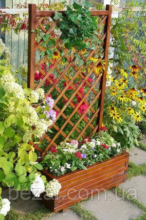 Клумба для витких рослин