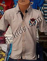 Стильна сорочка(шведка) для хлопчика віком 6-14 років(опт) пр. Туреччина