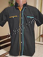 Стильная рубашка(шведка) для мальчика 6-14 лет(опт) пр. Турция