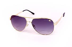 Мужские очки Lacoste 8254-3