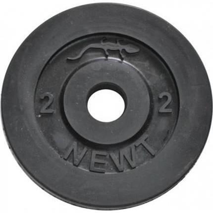 Диск стальной обрезиненный  Newt Home 2 кг, диаметр - 30 мм, фото 2