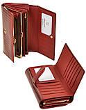 Женский кожаный кошелек BRETTON с визитницей лаковый, фото 2