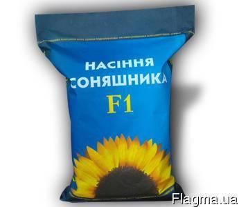 Семена подсолнечника  под Евролайтинг Богдан экстра ,(масса тысячи 66 грамм., фракция 3,2-3,4), фото 2