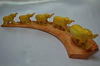 5 слонов в пути
