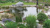 Создание декоративно - плавательного пруда. Цена  с материалами и оборудованием., фото 1