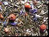 Китайский чай Прыжок тигра оптом от 5 кг