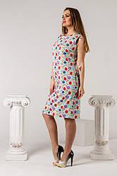 Платье женское 1658 (р. 42 - 46) купить в розницу по оптовой ценне