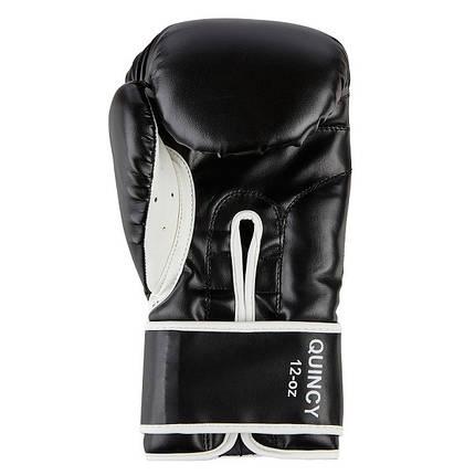 Боксерские перчатки BENLEE QUINCY (blk), фото 2