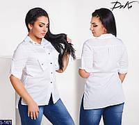 Рубашка S-1471 (54-56, 50-52) — купить Рубашки, блузки XL+ оптом и в розницу в одессе 7км
