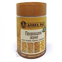 Пророщенные зёрна овса, ячменя, пшеницы, кукурузы в тубусе Добра Їжа 300г