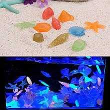 Камені в акваріум світяться - у наборі 10шт. (розмір одного каменю 2,5-3см), які поглинають світло і сетятся в темряві